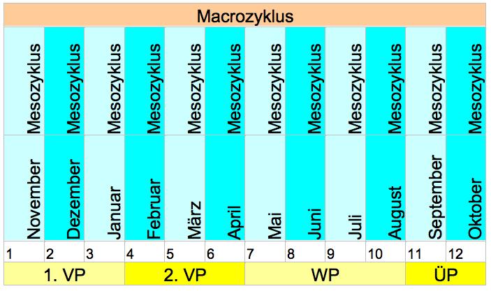 Macrozyklus