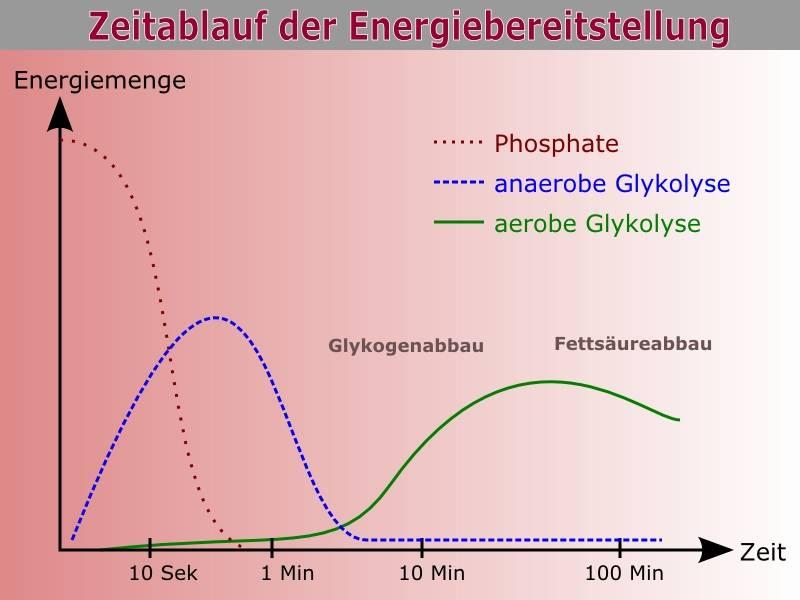 Grafik Zeitablauf Energiebereitstellung